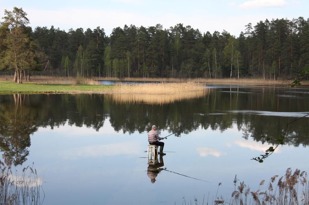 озеро пуговка лужский район рыбалка